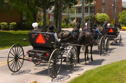 amish on horse and buggy
